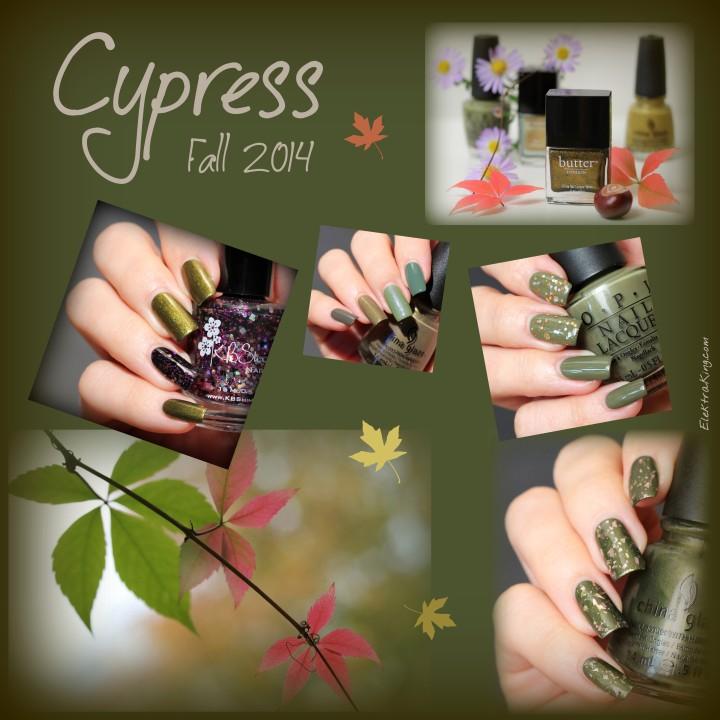 Fall 2014 Cypress