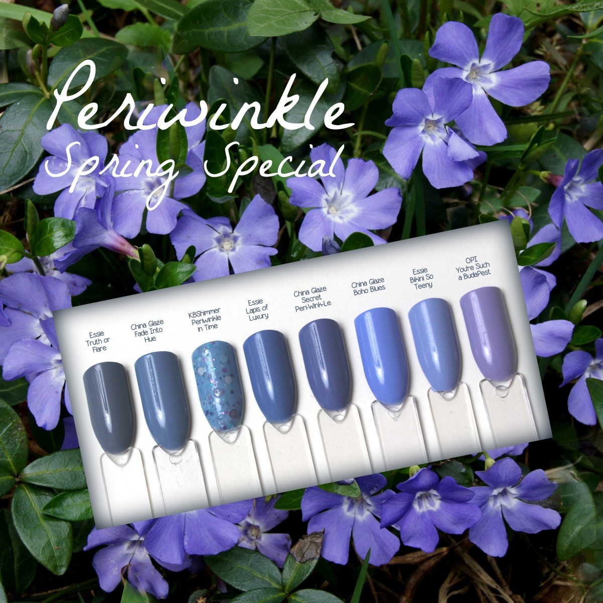 Periwinkle Spring Special