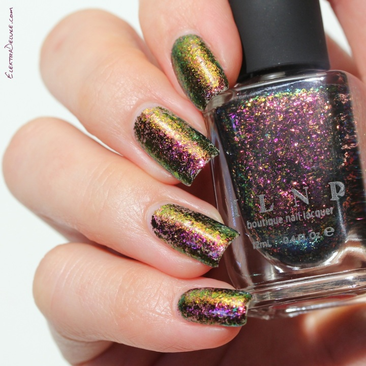 ILNP Electric Carnival